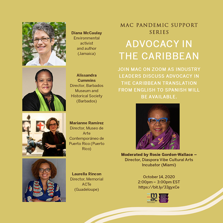 Pandemic Support Series - ADVOCACY IN THE CARIBBEAN